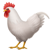Голова курицы