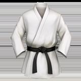 спортивное кимоно